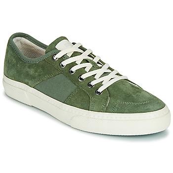 Zapatos Hombre Zapatillas bajas Globe SURPLUS Verde