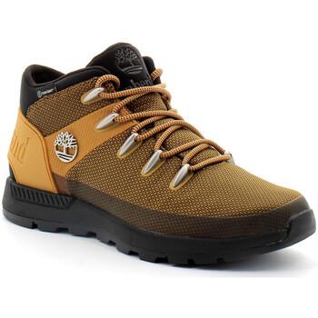 Zapatos Hombre Zapatillas altas Timberland Sprint Trekker Mid Marron