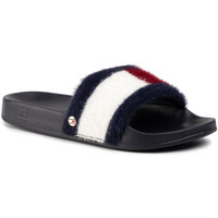 Zapatos Mujer Zuecos (Mules) Tommy Hilfiger FW0FW04620 Azul