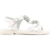 Zapatos Niños Sandalias Lulu LT080056L Blanco