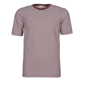 textil Hombre Camisetas manga corta Scotch & Soda 160847 Rojo / Blanco