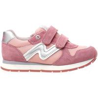 Zapatos Niños Zapatillas bajas Naturino 2011110-01-9107 Rosado