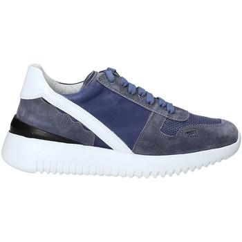 Zapatos Mujer Zapatillas bajas Triver Flight 101-02C Azul
