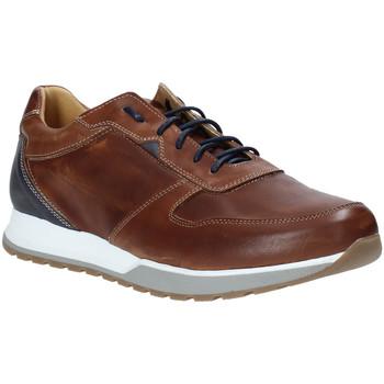Zapatos Hombre Zapatillas bajas Rogers 5068 Marrón