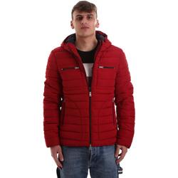 textil Hombre Plumas Gaudi 921BU35019 Rojo