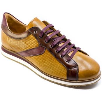 Zapatos Hombre Zapatillas bajas Exton 831 Marrón