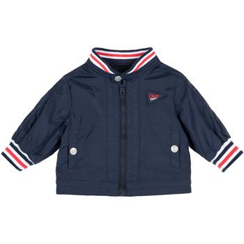 textil Niños Cortaviento Chicco 09087485000000 Azul