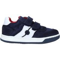 Zapatos Niños Deportivas Moda Falcotto 2014666 01 Azul