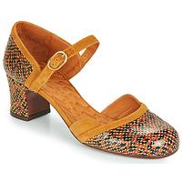 Zapatos Mujer Zapatos de tacón Chie Mihara TROMPETA Marrón