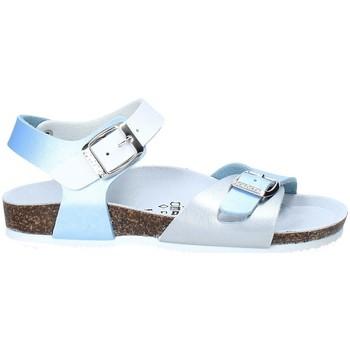 Zapatos Niños Sandalias Gold Star 8846D Azul