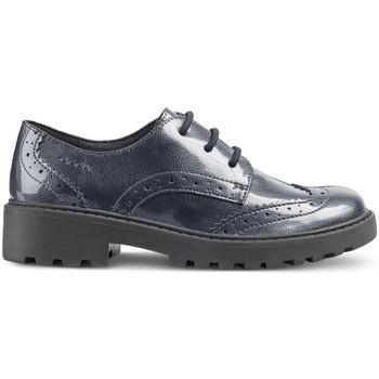 Zapatos Niño Derbie Geox J6420N 000HI Azul