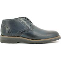 Zapatos Hombre Botas de caña baja Rogers 1790B Azul