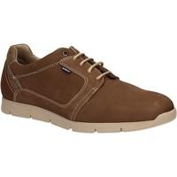 Zapatos Hombre Derbie Baerchi 5080 Marrón