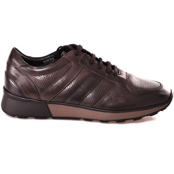 Zapatos Hombre Zapatillas bajas Soldini 20630 2 Marrón