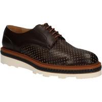 Zapatos Hombre Derbie Rogers WILLY Marrón
