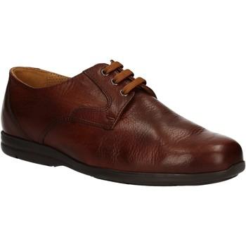 Zapatos Hombre Derbie Fontana 5685-VI Marrón