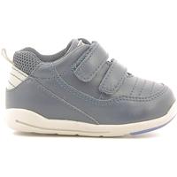 Zapatos Niños Zapatillas bajas Chicco 01056500000000 Azul