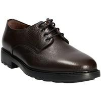 Zapatos Hombre Derbie Maritan G 111333 Marrón