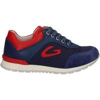 Zapatos Niños Zapatillas bajas Alberto Guardiani GK23301 Azul