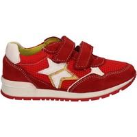 Zapatos Niños Zapatillas bajas Melania ME2092D7E.F Rojo
