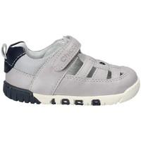 Zapatos Niños Sandalias Chicco 01059452 Gris