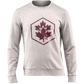 textil Hombre Sudaderas Lumberjack CM60142 001 502 Gris