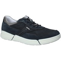 Zapatos Hombre Zapatillas bajas IgI&CO 1126 Azul