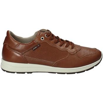 Zapatos Hombre Zapatillas bajas Enval 1211422 Marrón