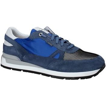 Zapatos Hombre Zapatillas bajas Exton 993 Azul