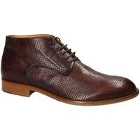 Zapatos Hombre Botas de caña baja Exton 5355 Marrón