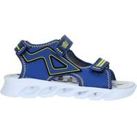 Zapatos Niños Sandalias Bulls S19-SBL839 Azul