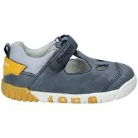 Zapatos Niños Sandalias Chicco 01059451 Gris