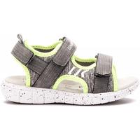 Zapatos Niños Sandalias Lumberjack SB28206 002 M17 Gris