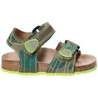 Zapatos Niños Sandalias Asso 64205 Marrón