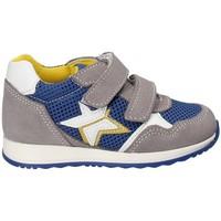 Zapatos Niños Zapatillas bajas Melania ME1175B8E.C Gris