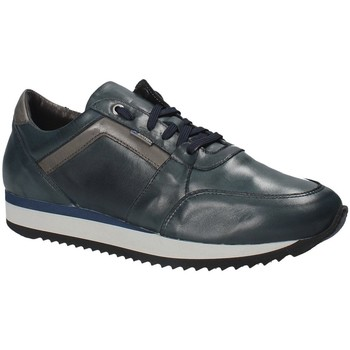Zapatos Hombre Zapatillas bajas Exton 558 Azul