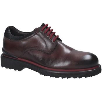 Zapatos Hombre Derbie Exton 940 Marrón
