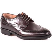 Zapatos Hombre Derbie Maritan G 112486MG Marrón