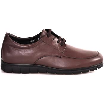 Zapatos Hombre Zapatillas bajas Soldini 20583 P Marrón