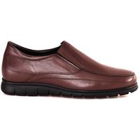Zapatos Hombre Mocasín Soldini 20366 P Marrón