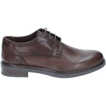 Zapatos Hombre Derbie Rogers 2027 Marrón