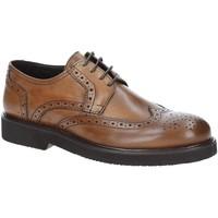Zapatos Hombre Derbie Exton 5446 Marrón