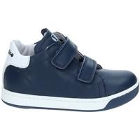 Zapatos Niños Zapatillas bajas Falcotto 2012363-01-9104 Azul