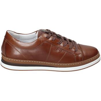 Zapatos Hombre Zapatillas bajas IgI&CO 3138122 Marrón