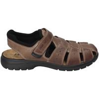 Zapatos Hombre Sandalias Enval 3247522 Marrón