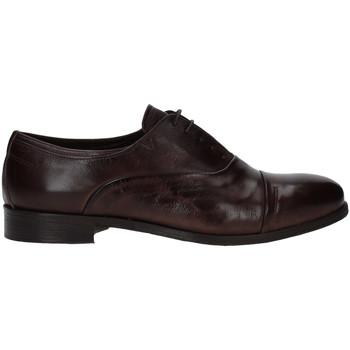 Zapatos Hombre Derbie Rogers T0001 Marrón