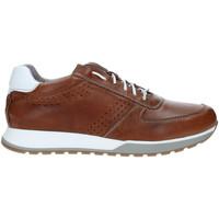 Zapatos Hombre Zapatillas bajas Rogers 5065 Marrón
