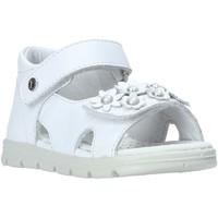 Zapatos Niña Sandalias Falcotto 1500774-01-0N01 Blanco