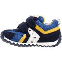 Zapatos Niños Zapatillas bajas Naturino 2013741-01-1C81 Azul