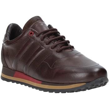 Zapatos Hombre Zapatillas bajas Exton 246 Marrón